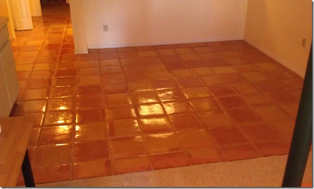 Tampa Grout Cleaning and Floor Cleaning Experts: Beautiful Mexican Tile