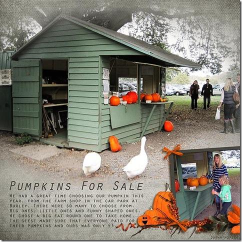 756 SnS-PumpkinSale