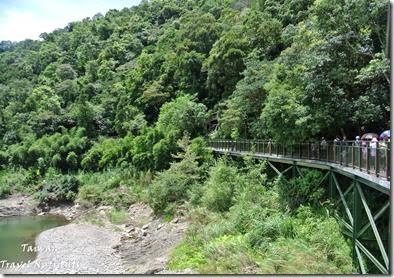 坪林觀魚步道 (3)