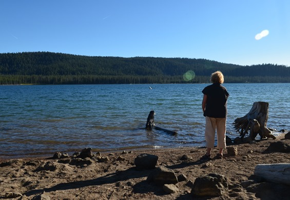 evening play on the beach at Medicine Lake