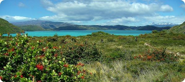 Vista do Lago Pehoé desde o Campamento Paine Grande