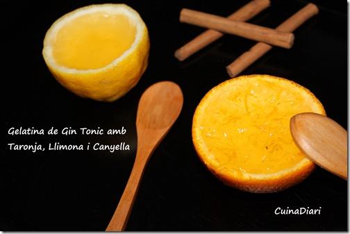 7-gin tonic jelly-ppal-taronja i llimona