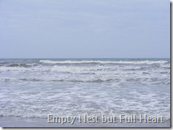 Cocoa Beach, FL 007
