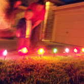 Christmas Lights - 115_8831.JPG