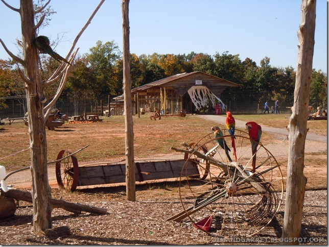 2011-10-16 005