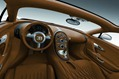 Bugatti-Veyron-GS-Vitesse-34