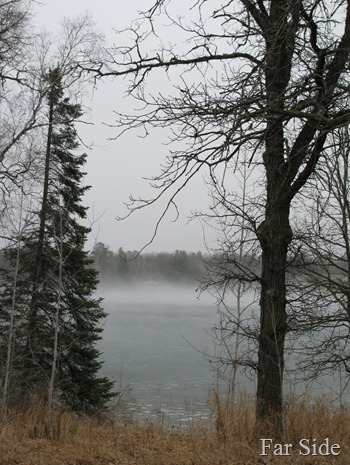 Advection fog on the lake March23