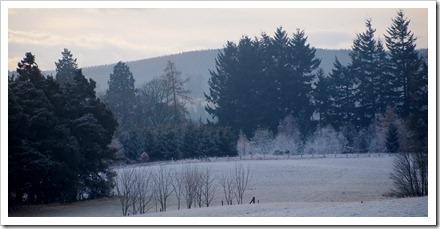 17 Jan 16 17-01-2012 11-04-25