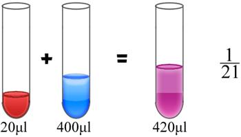 diluição leucócito liquido de turk