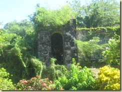 Destroyed building and vegetation (Small)