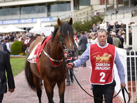green moon_mounting yard 1