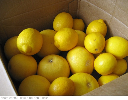 'when life gives you lemons...' photo (c) 2009, little blue hen - license: http://creativecommons.org/licenses/by/2.0/