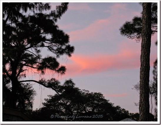 02-19-sunset