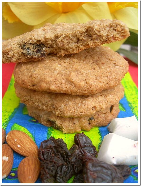 oatsalmondraisincoconutcookies