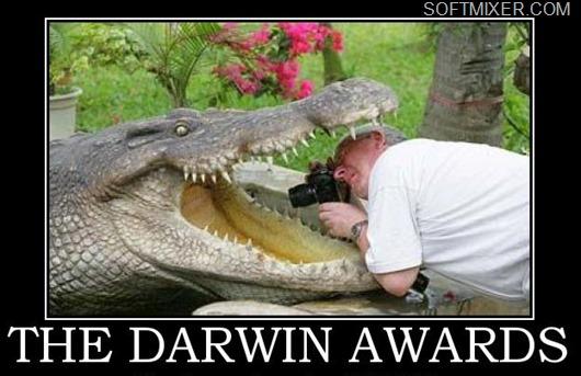 darwin-awards-89407812310