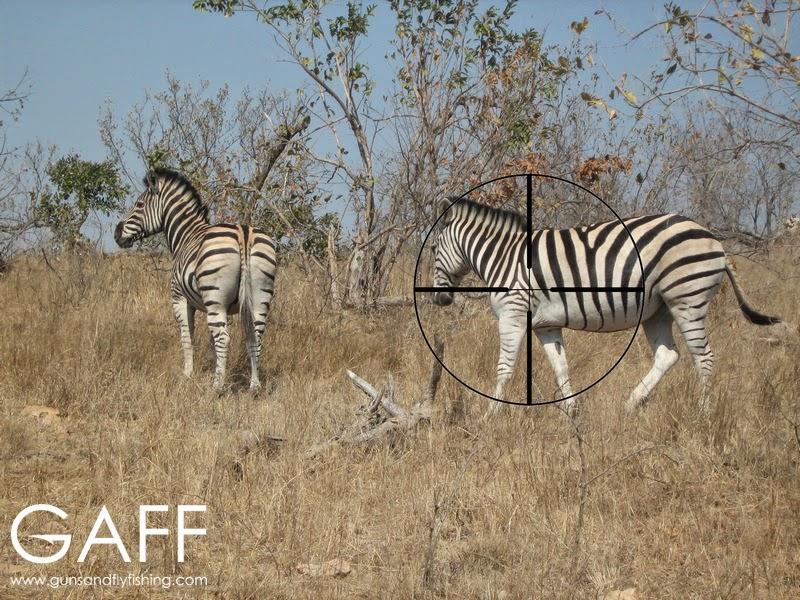 Zebra-hunting-shot-placement.jpg