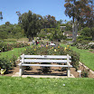 Rose Garden at the Mission 011.JPG
