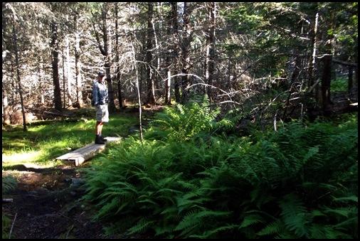 TNC hike, Pretty Marsh picnic, Bernard, Bass Harbor Light 037