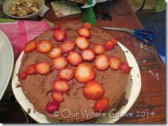 solstice cake 1