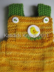 Chicklet overalls 021