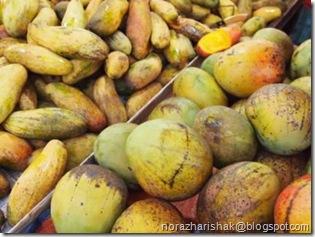 manymangoes
