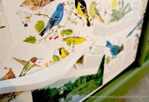 birddrawer  #modpodge #dresser #crafting #furniture