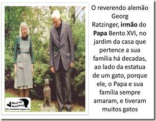 papa_ama_gatos (3)