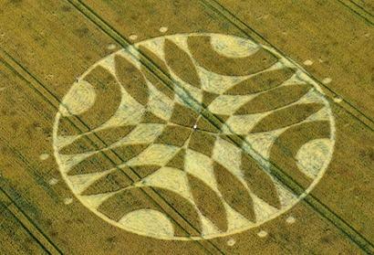 Cercuri in lanuri 18 Iulie