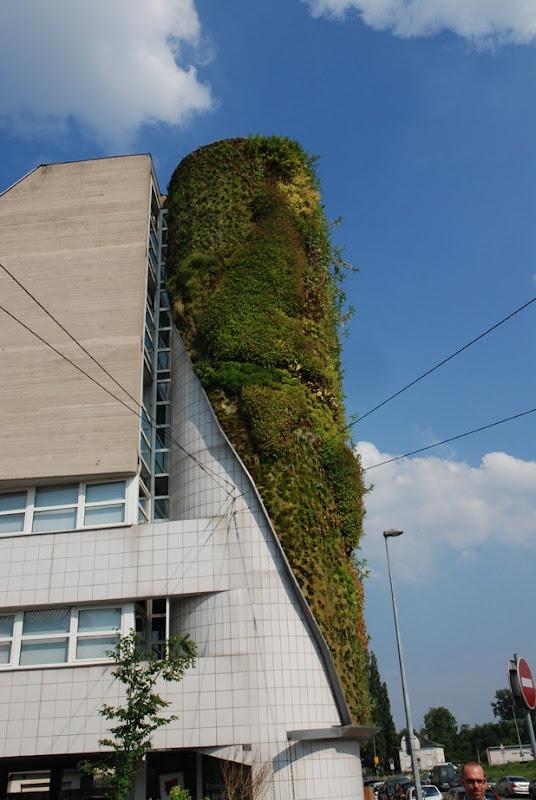vertical garden by patrick blanc 6