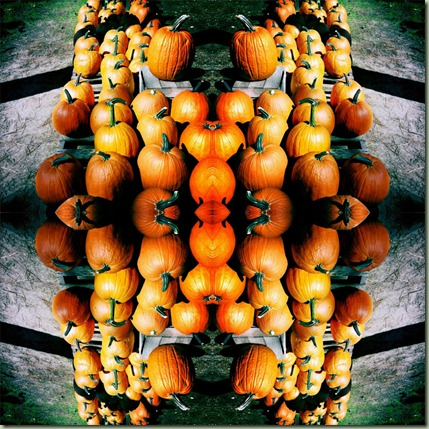 pumpkinmontage