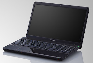 Sony Vaio Serie E 