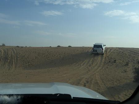 Dubai Desert Safari: