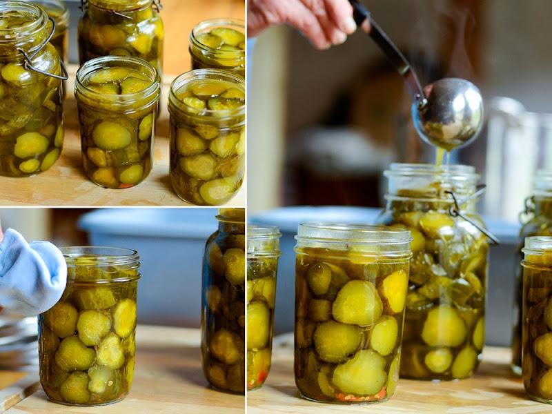 crystal pickle chips11