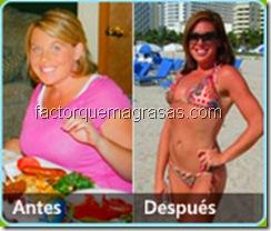 opiniones sobre el factor quema grasa