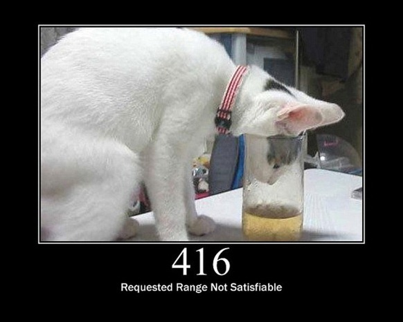 HTTP-Status-Cats-15