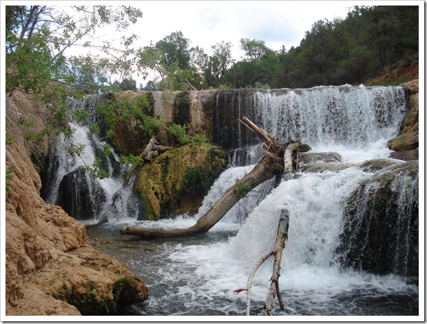 Fossil Springs