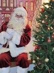 Visiting Santa isn't just for the dogsTracy L's kitten, Bubba, is ready with a catnip-filled wish list!
