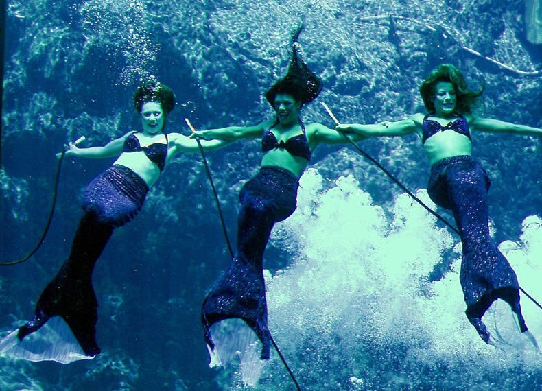 weeki-wachee-mermaids-9