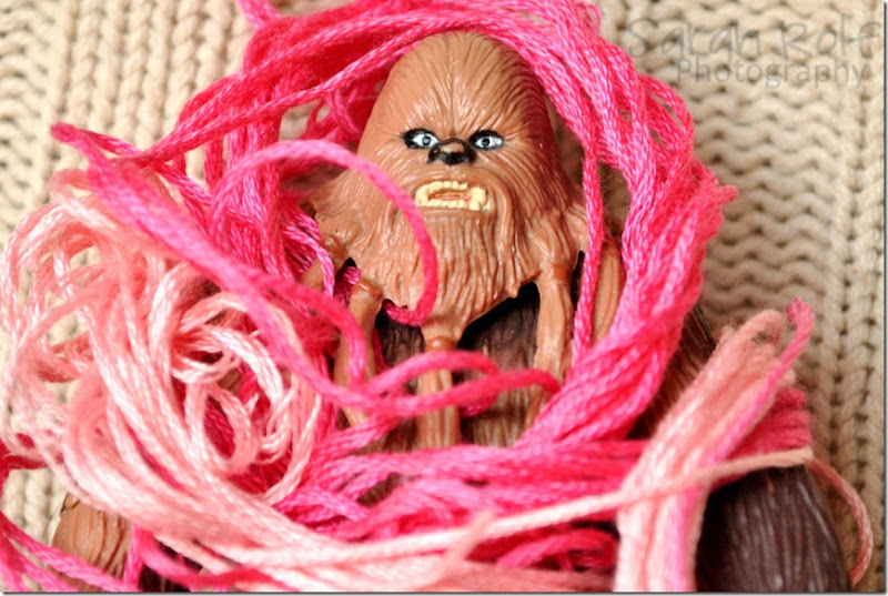 Chewbacca-wrapped-in-string