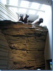 1090 Alberta Hwy 785 West - Head-Smashed-In Buffalo Jump Interpretive Centre