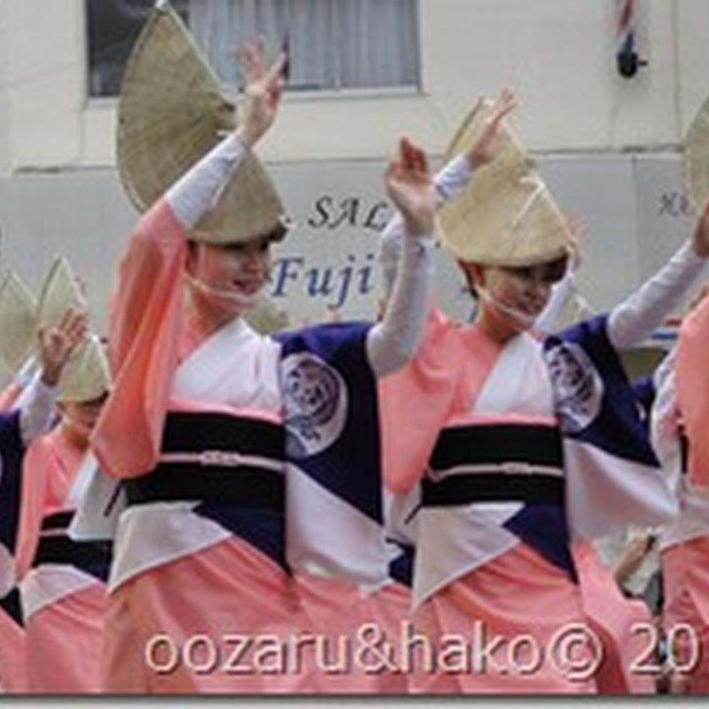 Koenji Awaodori - 高円寺の阿波踊り