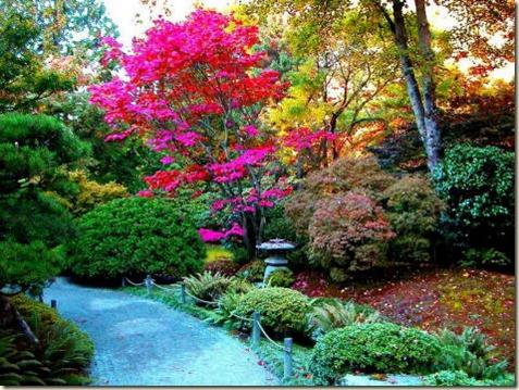 decoración de jardines9