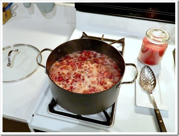 Cranberries Boiled (550x413) (2)