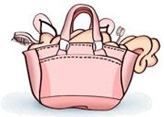 bolsa de mulher