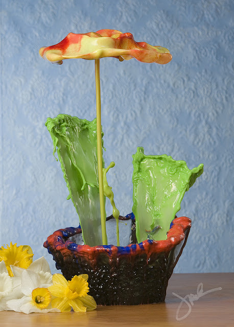 fiori-liquidi-jack-long-04-terapixel.jpg