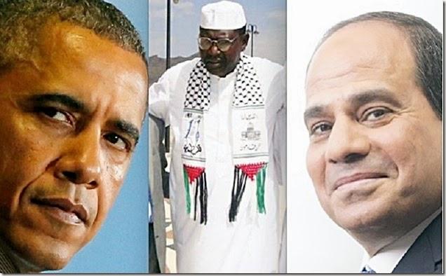 Barack Obama, Malik Obama & Abdel Fatah el-Sisi