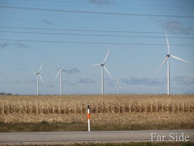 Windmill and Corn Field in Manitoba