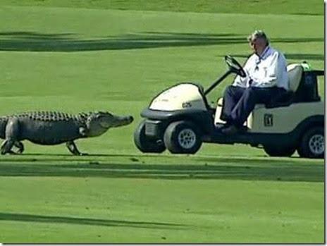 bad-golf-day004