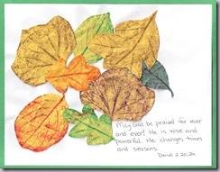 leaves2012-09