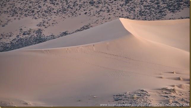 Desierto-222